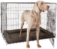 Double Door Pet Cage - Extra Large